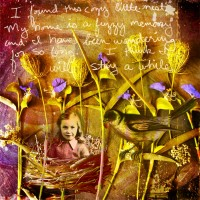 More Of The Mom Journal-The Enchanted Forest
