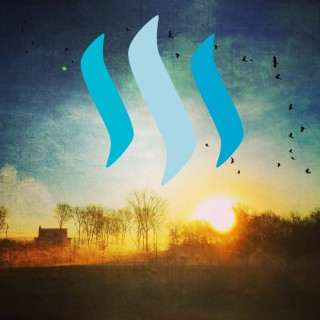 Cover Banner For Steemit Blog